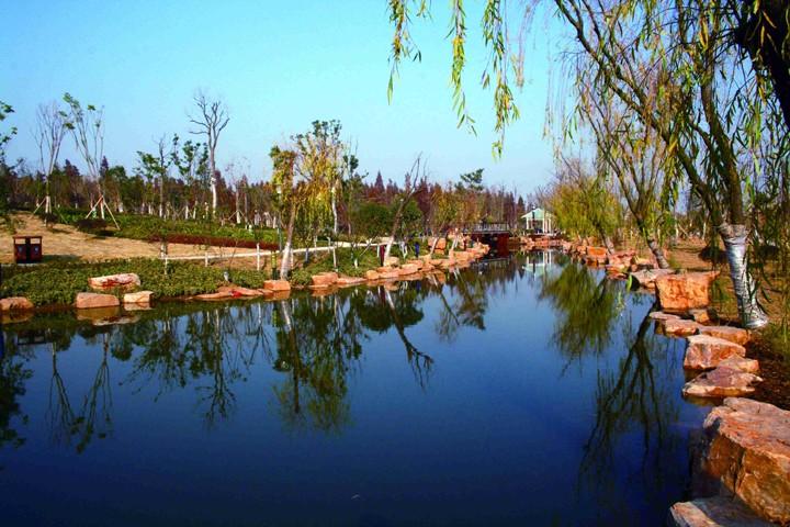 红草湖湿地公园3.jpg