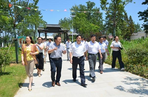 滁州市委副书记调研冶山高巷美好镇村建设工作